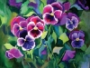 kathy-sharpe-pansies.jpg