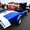 blue viper-0096