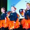 Butterflies-0302