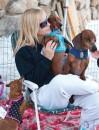 Foxy Doxy Dog Rescue-1188
