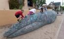 climbing on sandy-1085