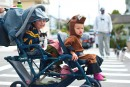 stroller rollers-0419