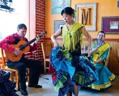 flamencoCMYK