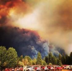 wildfire web
