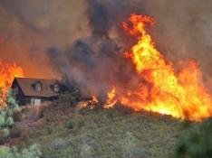 wildfire-web